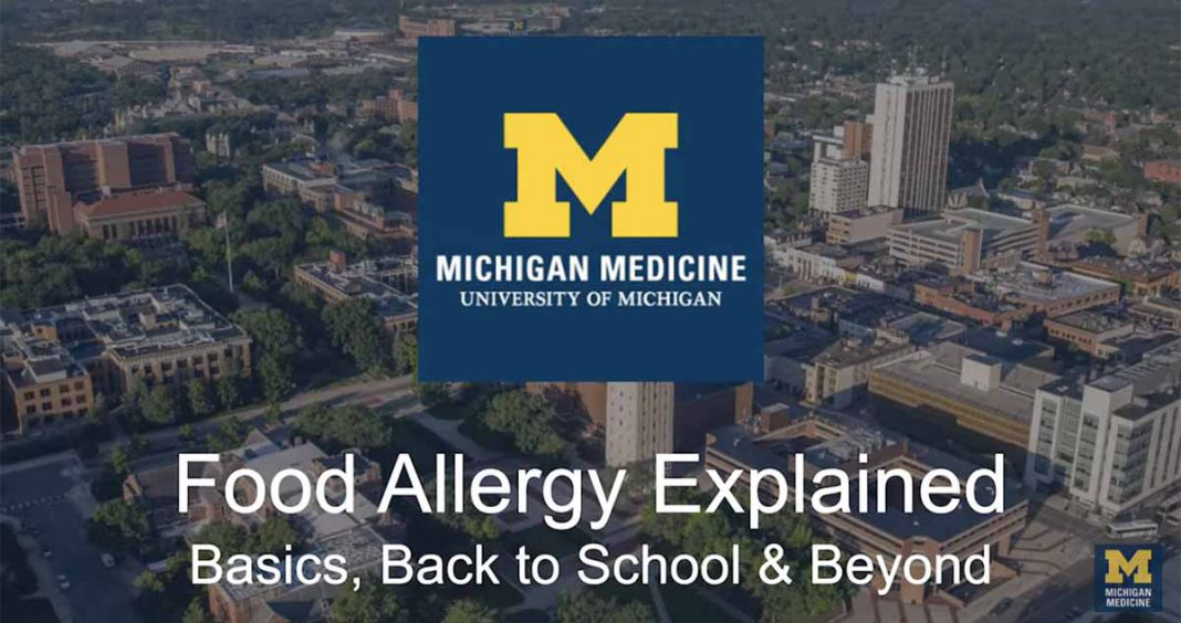 Food Allergy Explained Video